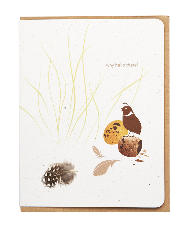 Li'l Bit Fancy Card Set: Baby Quail